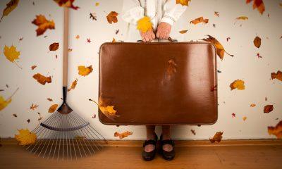 Plombier Expert | Belle-mère tenant un valise avec râteau et feuilles mortes