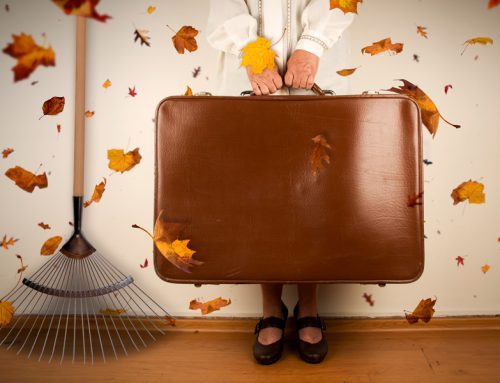 Fall tasks: how to prevent water damage the easy or the hard way